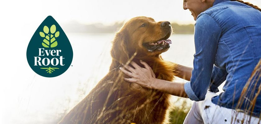 Free Purina EverRoot Dog Supplements