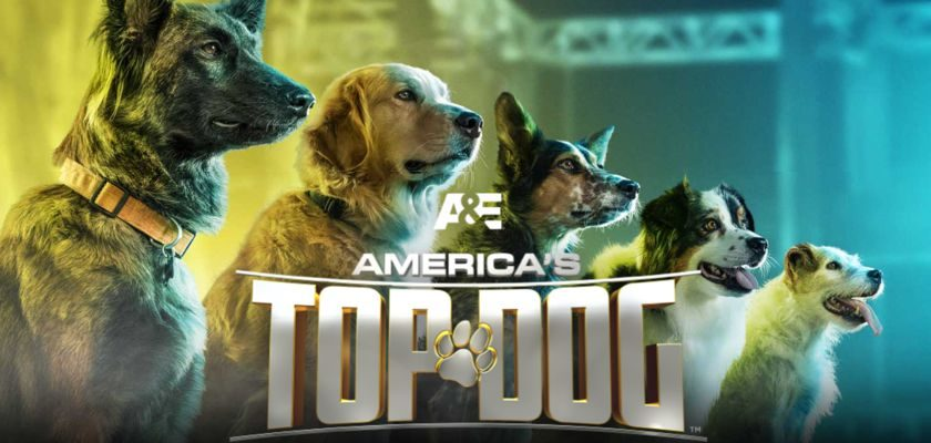 A&E - America's Top Dog Sweepstakes